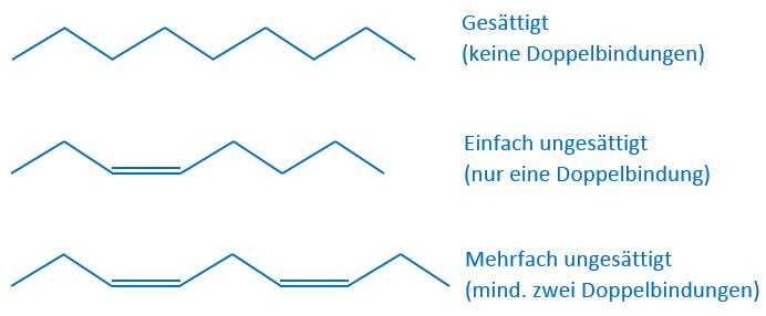 fettsaeuren-anzahl-doppelbindungen
