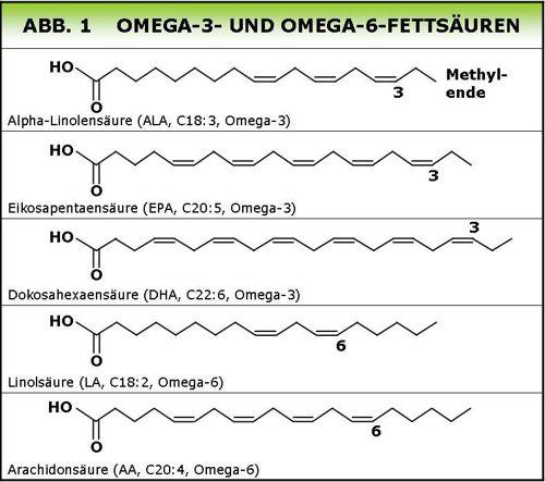Omega-fetts-uren-struktur