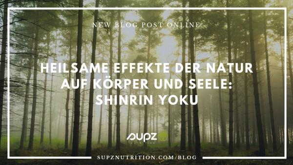 Waldbaden-Blog